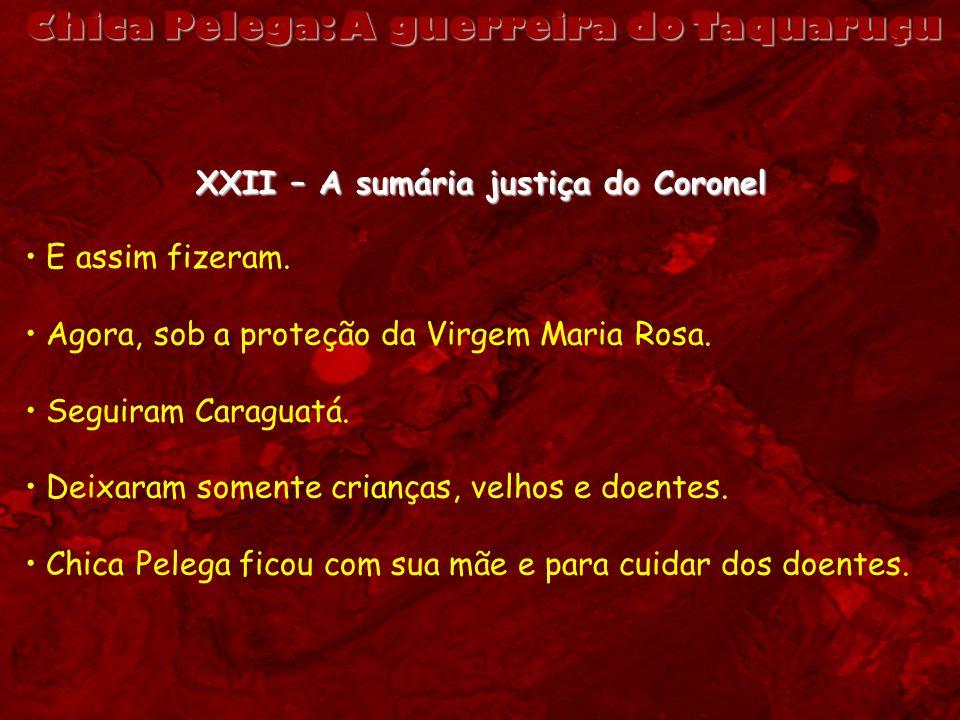 Chica Pelega: A guerreira do Taquaruçu XXII – A sumária justiça do Coronel E assim fizeram. Agora, sob a proteção da Virgem Maria Rosa. Seguiram Carag