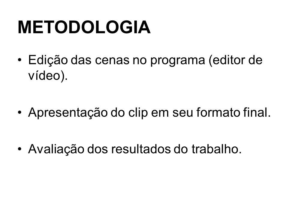 METODOLOGIA Edição das cenas no programa (editor de vídeo). Apresentação do clip em seu formato final. Avaliação dos resultados do trabalho.