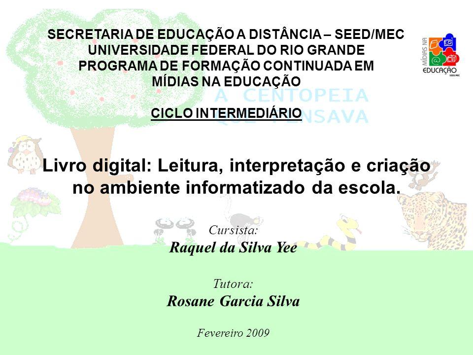 SECRETARIA DE EDUCAÇÃO A DISTÂNCIA – SEED/MEC UNIVERSIDADE FEDERAL DO RIO GRANDE PROGRAMA DE FORMAÇÃO CONTINUADA EM MÍDIAS NA EDUCAÇÃO CICLO INTERMEDI