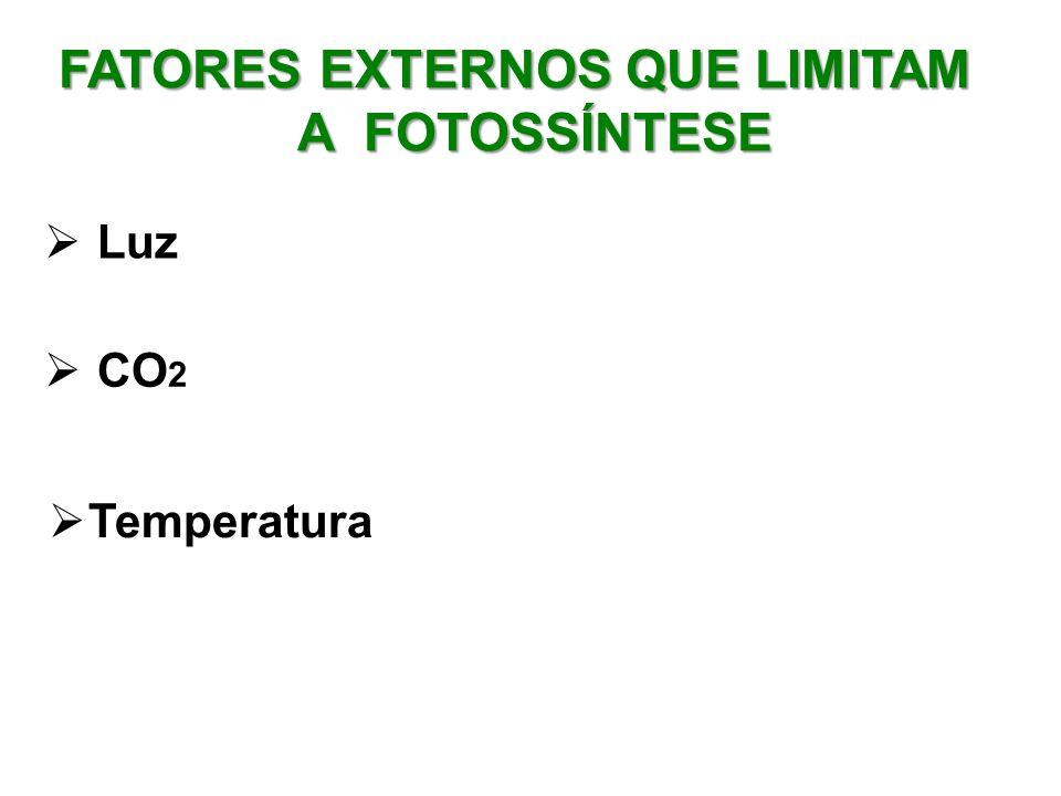 FATORES EXTERNOS QUE LIMITAM A FOTOSSÍNTESE Luz CO 2 Temperatura