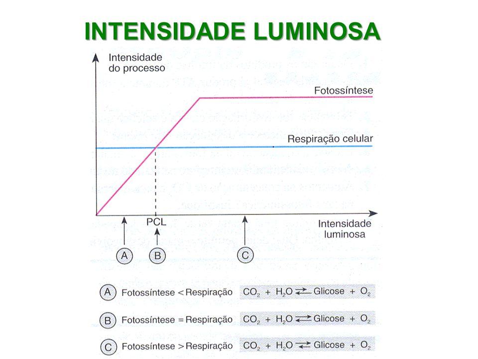 INTENSIDADE LUMINOSA
