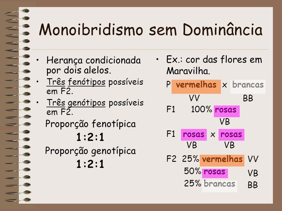 Monoibridismo sem Dominância Herança condicionada por dois alelos. Três fenótipos possíveis em F2. Três genótipos possíveis em F2. Proporção fenotípic