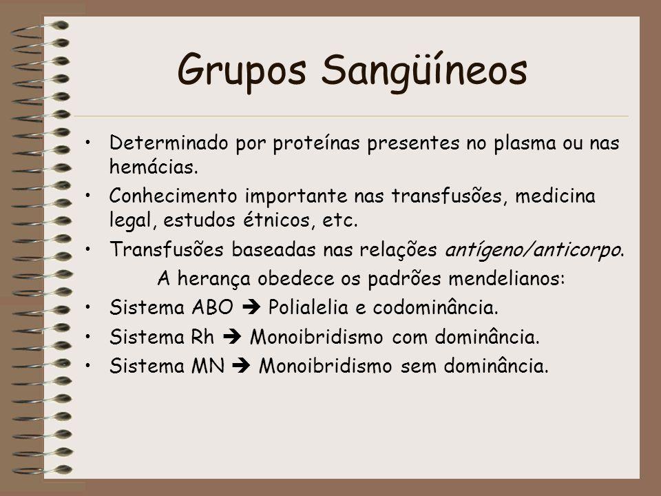 Grupos Sangüíneos Determinado por proteínas presentes no plasma ou nas hemácias. Conhecimento importante nas transfusões, medicina legal, estudos étni