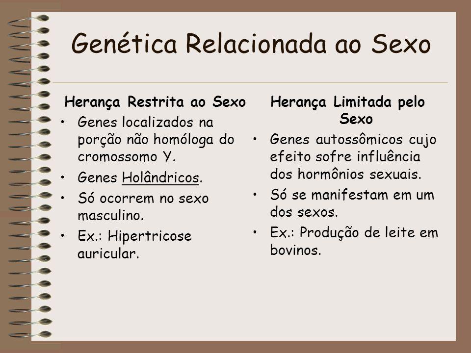 Genética Relacionada ao Sexo Herança Restrita ao Sexo Genes localizados na porção não homóloga do cromossomo Y. Genes Holândricos. Só ocorrem no sexo