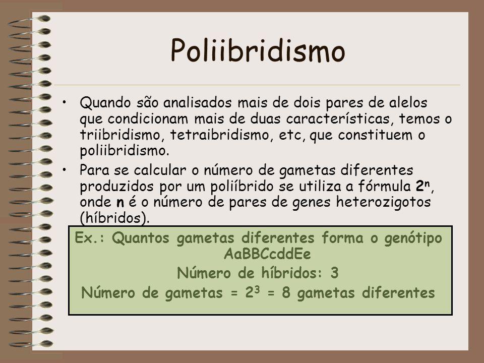 Poliibridismo Quando são analisados mais de dois pares de alelos que condicionam mais de duas características, temos o triibridismo, tetraibridismo, e