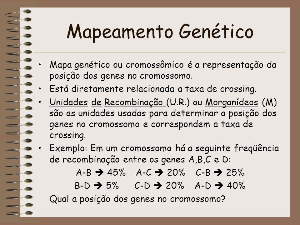 Mapeamento Genético Mapa genético ou cromossômico é a representação da posição dos genes no cromossomo. Está diretamente relacionada a taxa de crossin