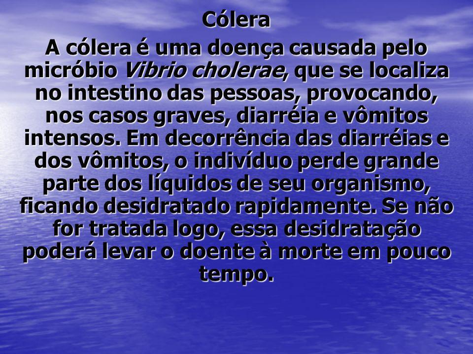 Cólera A cólera é uma doença causada pelo micróbio Vibrio cholerae, que se localiza no intestino das pessoas, provocando, nos casos graves, diarréia e