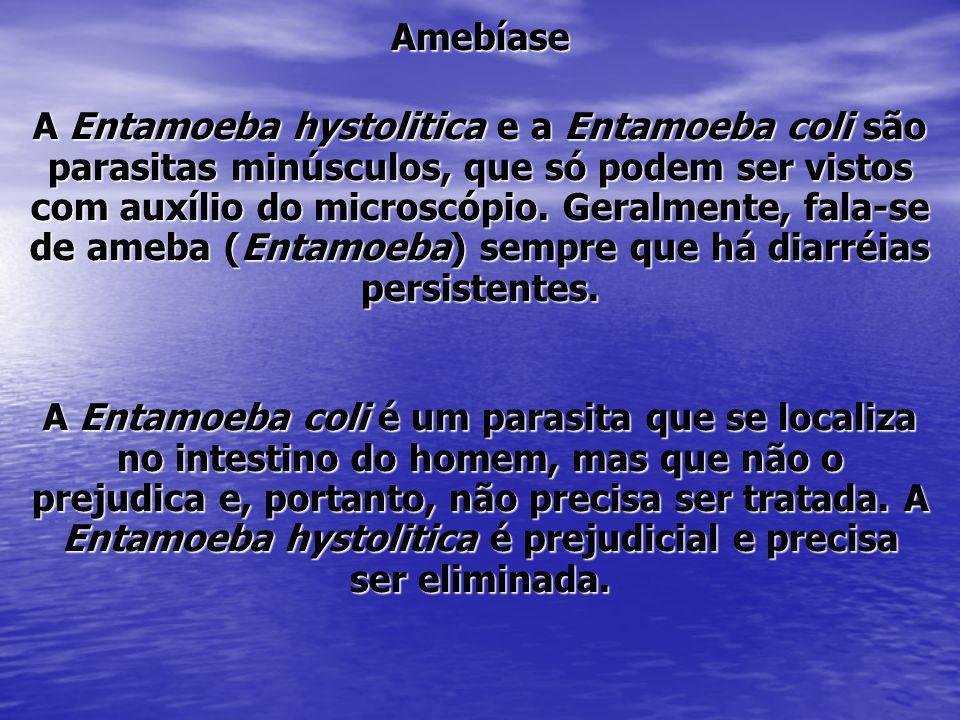 Amebíase A Entamoeba hystolitica e a Entamoeba coli são parasitas minúsculos, que só podem ser vistos com auxílio do microscópio. Geralmente, fala-se