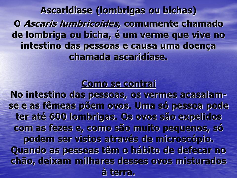Ascaridíase (lombrigas ou bichas) O Ascaris lumbricoides, comumente chamado de lombriga ou bicha, é um verme que vive no intestino das pessoas e causa