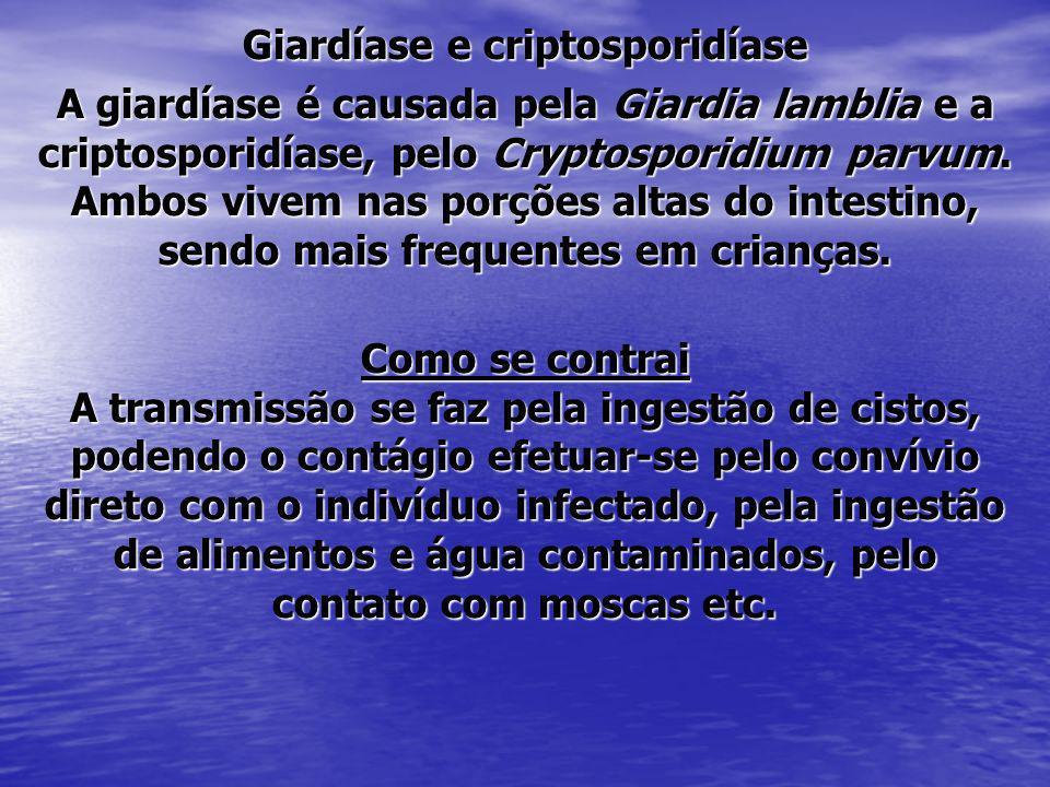 Giardíase e criptosporidíase A giardíase é causada pela Giardia lamblia e a criptosporidíase, pelo Cryptosporidium parvum. Ambos vivem nas porções alt