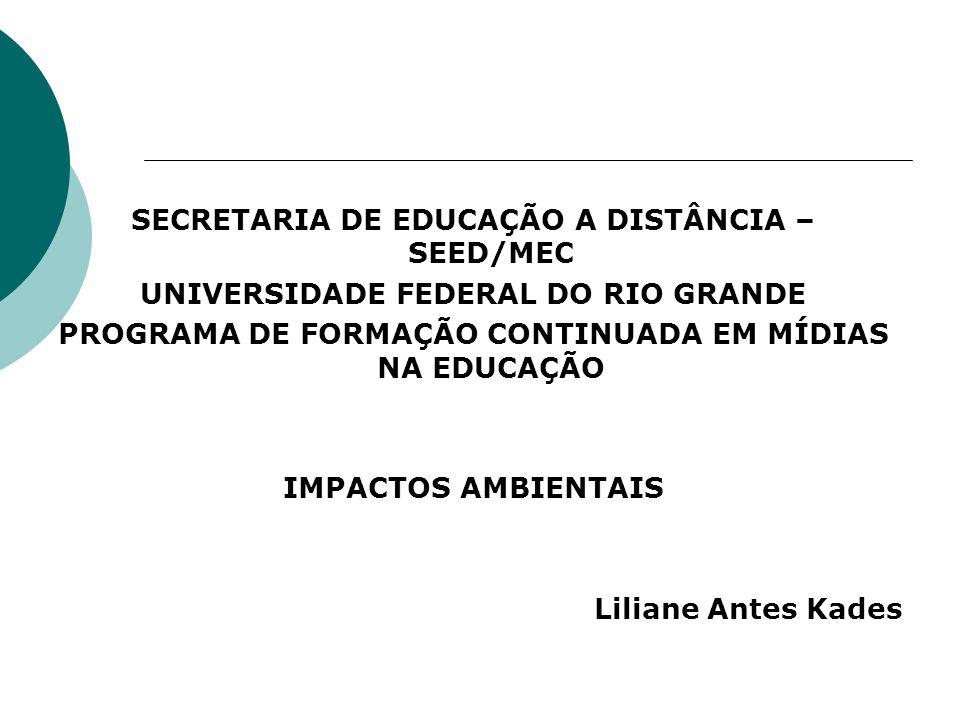 SECRETARIA DE EDUCAÇÃO A DISTÂNCIA – SEED/MEC UNIVERSIDADE FEDERAL DO RIO GRANDE PROGRAMA DE FORMAÇÃO CONTINUADA EM MÍDIAS NA EDUCAÇÃO IMPACTOS AMBIEN