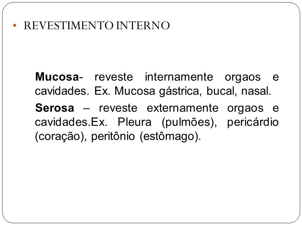 REVESTIMENTO INTERNO Mucosa- reveste internamente orgaos e cavidades. Ex. Mucosa gástrica, bucal, nasal. Serosa – reveste externamente orgaos e cavida