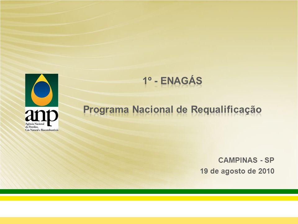 Histórico do Programa de Requalificação Resumo das Etapas do Processo de Requalificação \ Inutilização de vasilhames Números do Programa de Requalificação Conclusões Agenda da Apresentação