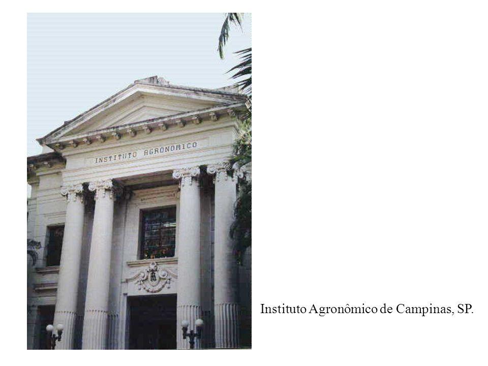 Instituto Agronômico de Campinas, SP.