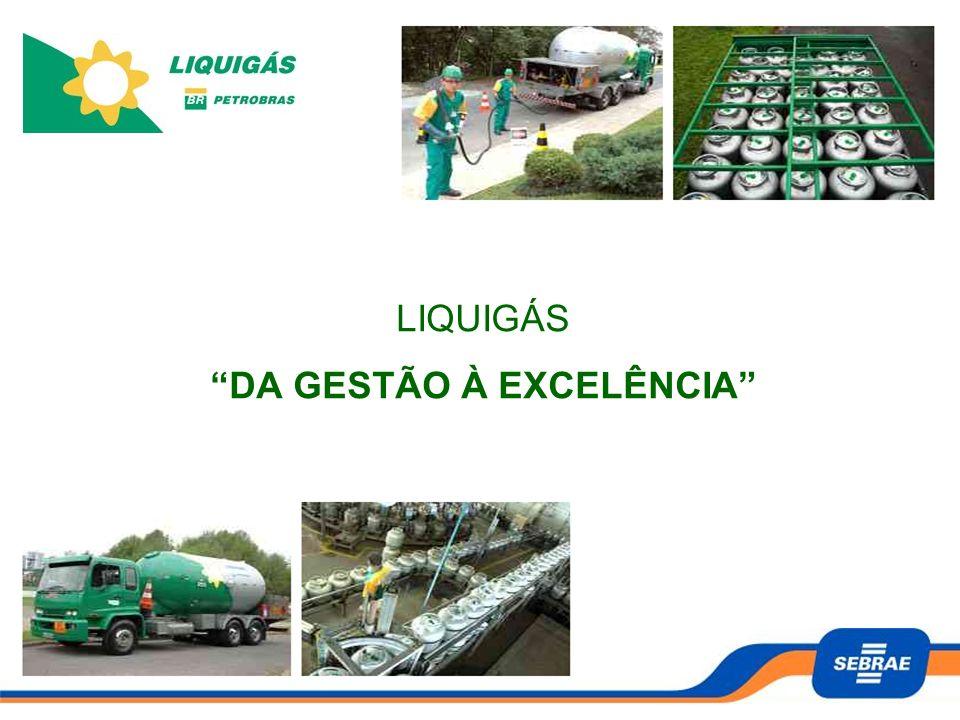 Propiciar às empresas participantes a capacidade de avaliar, decidir e implementar de forma consistente e sustentável a administração de seus negócios, gerando desenvolvimento e crescimento para os revendedores de gás (GLP) da Liquigás.