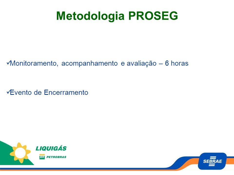 Metodologia PROSEG Monitoramento, acompanhamento e avaliação – 6 horas Evento de Encerramento