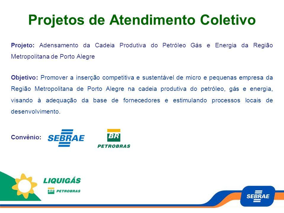 Projetos de Atendimento Coletivo Projeto: Adensamento da Cadeia Produtiva do Petróleo Gás e Energia da Região Metropolitana de Porto Alegre Objetivo: