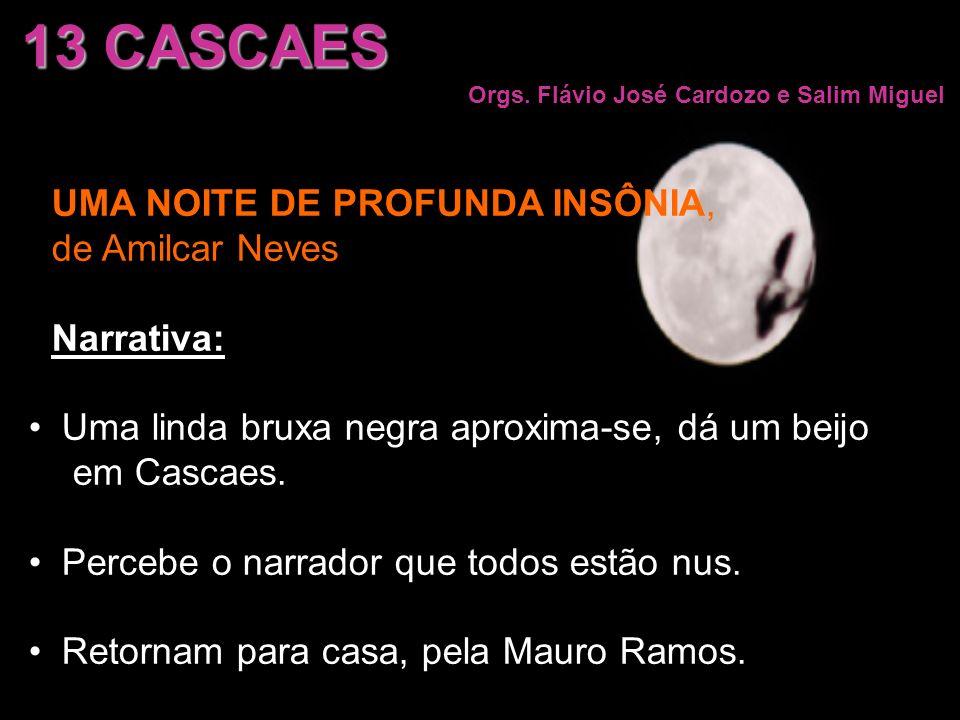 UMA NOITE DE PROFUNDA INSÔNIA, de Amilcar Neves Narrativa: Uma linda bruxa negra aproxima-se, dá um beijo em Cascaes. Percebe o narrador que todos est
