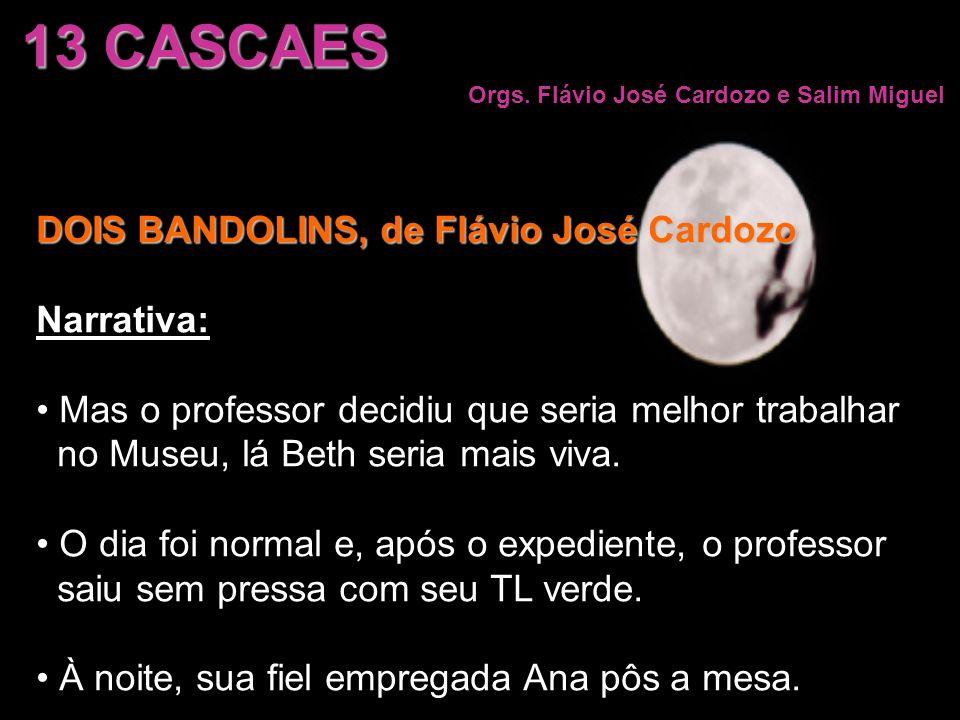 DOIS BANDOLINS, de Flávio José Cardozo Narrativa: Mas o professor decidiu que seria melhor trabalhar no Museu, lá Beth seria mais viva. O dia foi norm