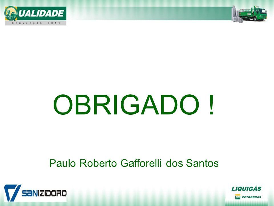 OBRIGADO ! Paulo Roberto Gafforelli dos Santos
