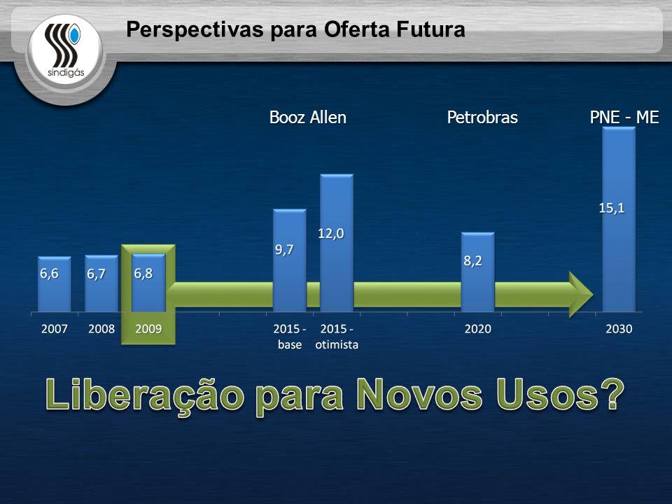 Booz Allen PNE - ME Petrobras Perspectivas para Oferta Futura
