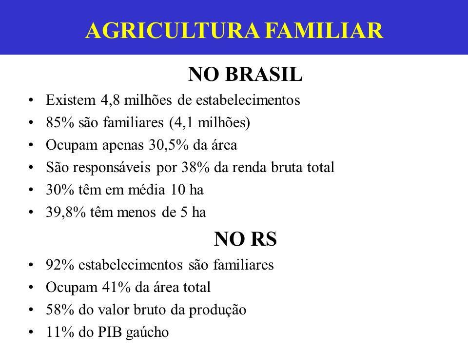 AGRICULTURA FAMILIAR NO BRASIL Existem 4,8 milhões de estabelecimentos 85% são familiares (4,1 milhões) Ocupam apenas 30,5% da área São responsáveis p