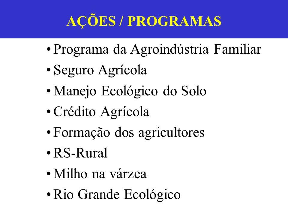 Programa da Agroindústria Familiar Seguro Agrícola Manejo Ecológico do Solo Crédito Agrícola Formação dos agricultores RS-Rural Milho na várzea Rio Gr