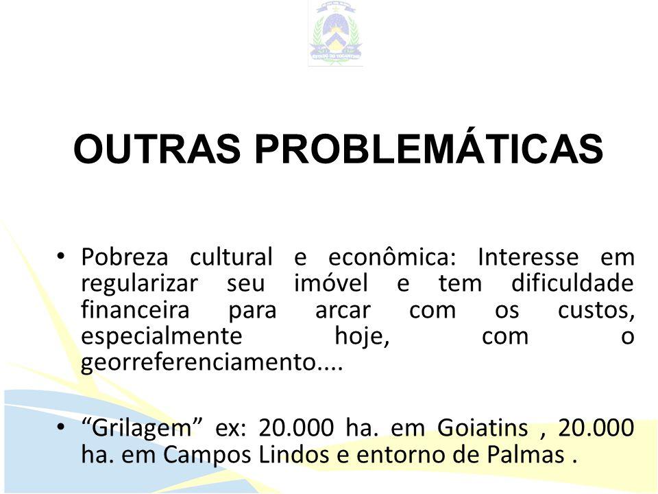 OUTRAS PROBLEMÁTICAS Pobreza cultural e econômica: Interesse em regularizar seu imóvel e tem dificuldade financeira para arcar com os custos, especial