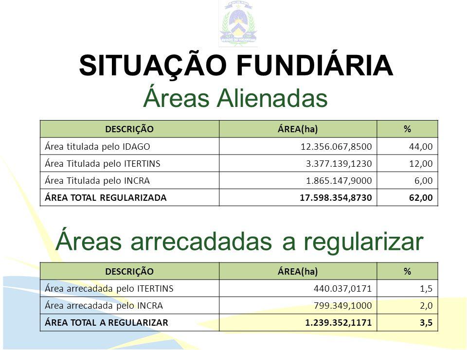 SITUAÇÃO FUNDIÁRIA Áreas Alienadas DESCRIÇÃOÁREA(ha)% Área titulada pelo IDAGO12.356.067,850044,00 Área Titulada pelo ITERTINS3.377.139,123012,00 Área