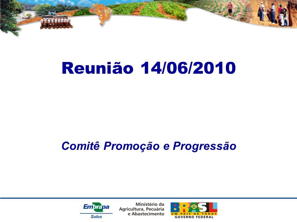 Reunião 14/06/2010 Comitê Promoção e Progressão
