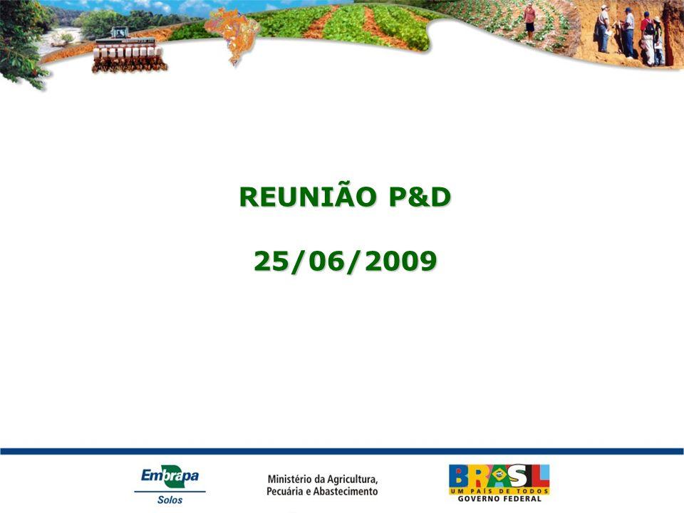 REUNIÃO P&D 25/06/2009