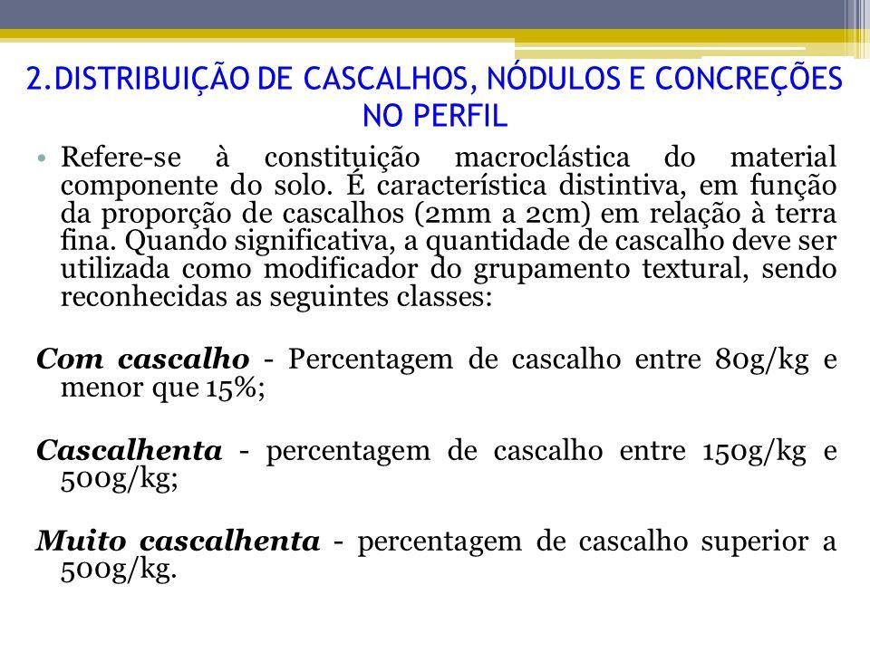 2.DISTRIBUIÇÃO DE CASCALHOS, NÓDULOS E CONCREÇÕES NO PERFIL Refere-se à constituição macroclástica do material componente do solo. É característica di