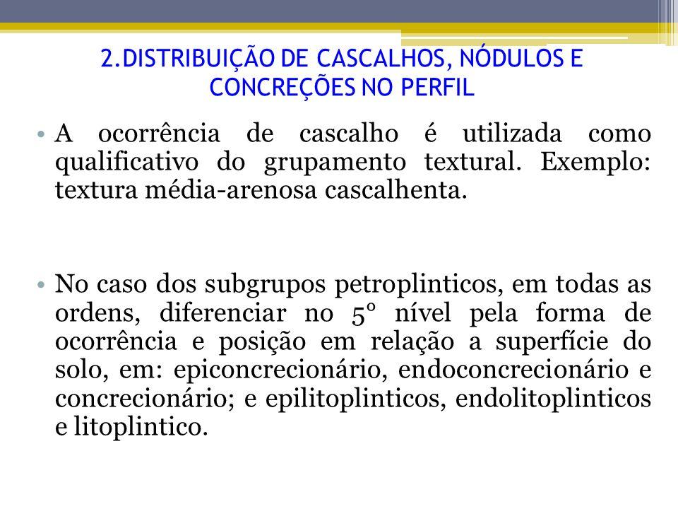 2.DISTRIBUIÇÃO DE CASCALHOS, NÓDULOS E CONCREÇÕES NO PERFIL A ocorrência de cascalho é utilizada como qualificativo do grupamento textural. Exemplo: t