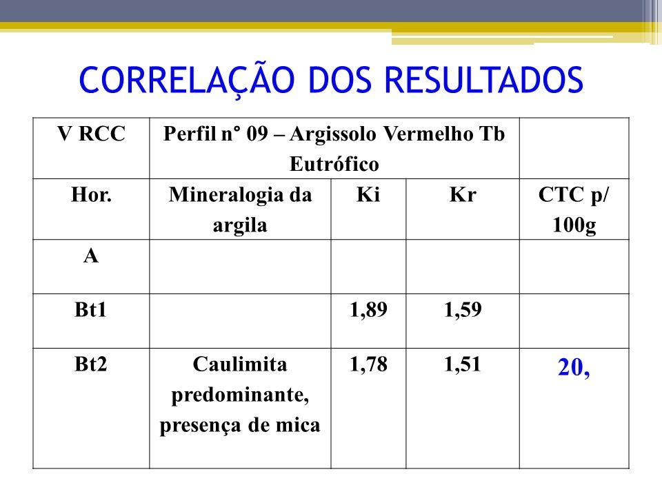 V RCC Perfil n° 09 – Argissolo Vermelho Tb Eutrófico Hor. Mineralogia da argila KiKr CTC p/ 100g A Bt11,891,59 Bt2Caulimita predominante, presença de