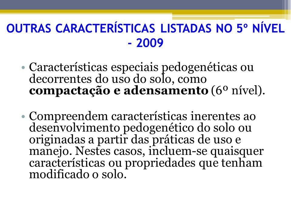 OUTRAS CARACTERÍSTICAS LISTADAS NO 5º NÍVEL - 2009 Características especiais pedogenéticas ou decorrentes do uso do solo, como compactação e adensamen