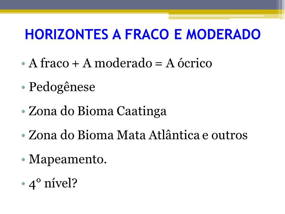 HORIZONTES A FRACO E MODERADO A fraco + A moderado = A ócrico Pedogênese Zona do Bioma Caatinga Zona do Bioma Mata Atlântica e outros Mapeamento. 4° n