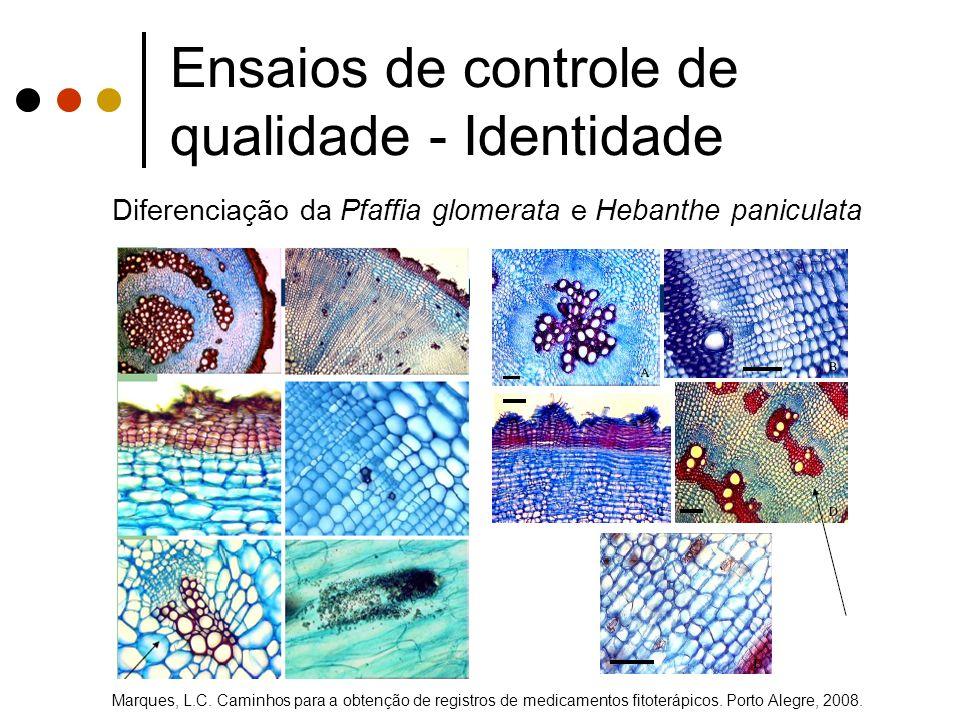 Diferenciação da Pfaffia glomerata e Hebanthe paniculata Marques, L.C. Caminhos para a obtenção de registros de medicamentos fitoterápicos. Porto Aleg