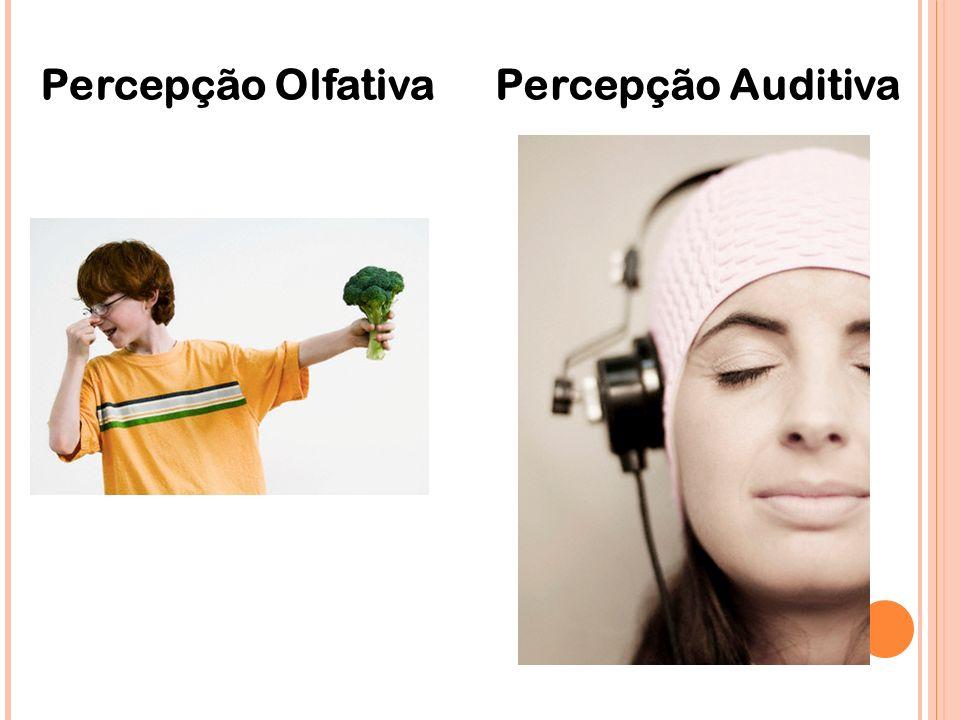Percepção OlfativaPercepção Auditiva