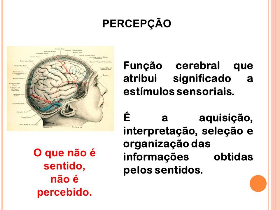 PERCEPÇÃO Função cerebral que atribui significado a estímulos sensoriais. É a aquisição, interpretação, seleção e organização das informações obtidas