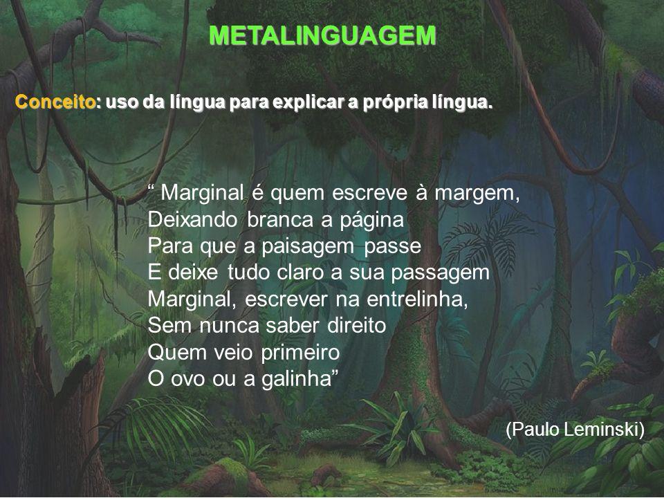 METALINGUAGEM Conceito: uso da língua para explicar a própria língua. Marginal é quem escreve à margem, Deixando branca a página Para que a paisagem p