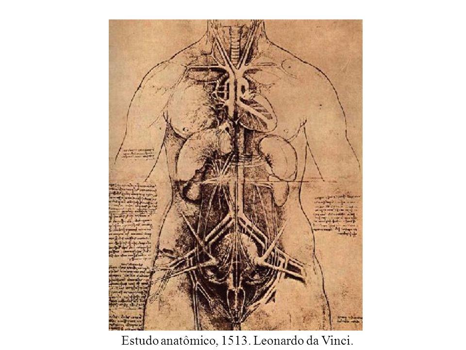Coração, s. d., Desenho. Leonardo Da Vinci.