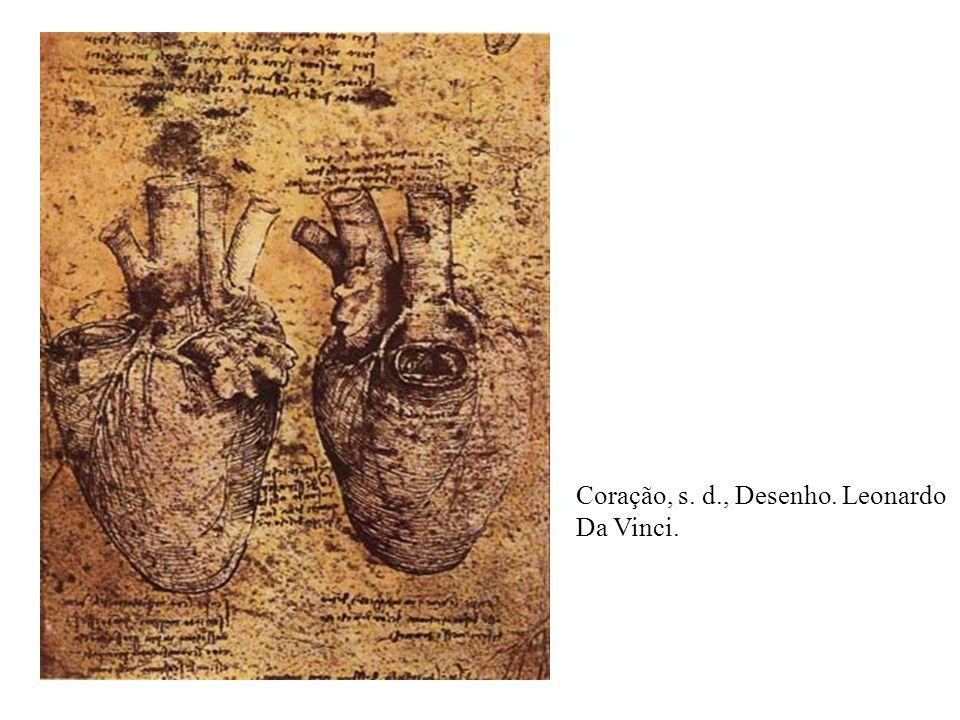 Estudos do Esqueleto Humano. Leonardo da Vinci. 1489. 1510-11.