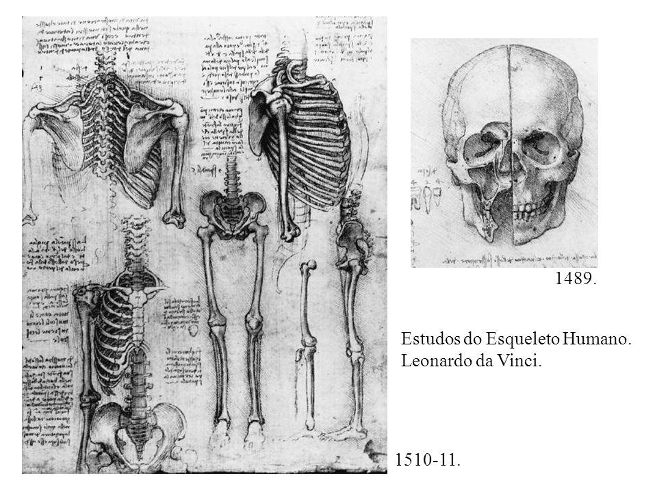 Estudo de mãos, s. d., Leonardo da Vinci.