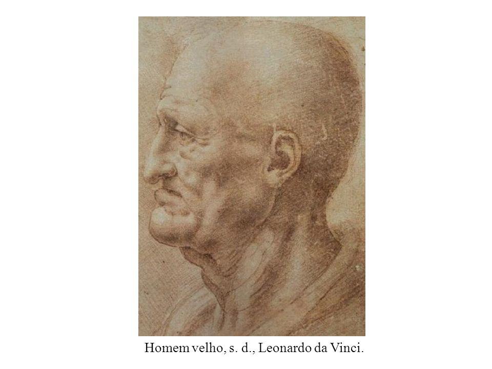 Estudos de fetos, c. 1510. Leonardo da Vinci.