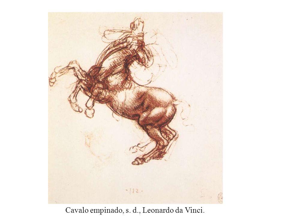 Estudo com Cavalo, s. d., Leonardo da Vinci.