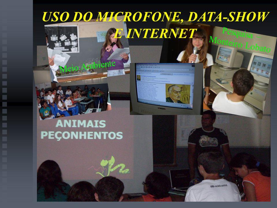 USO DO MICROFONE, DATA-SHOW E INTERNET Pesquisa – Monteiro Lobato Meio Ambiente