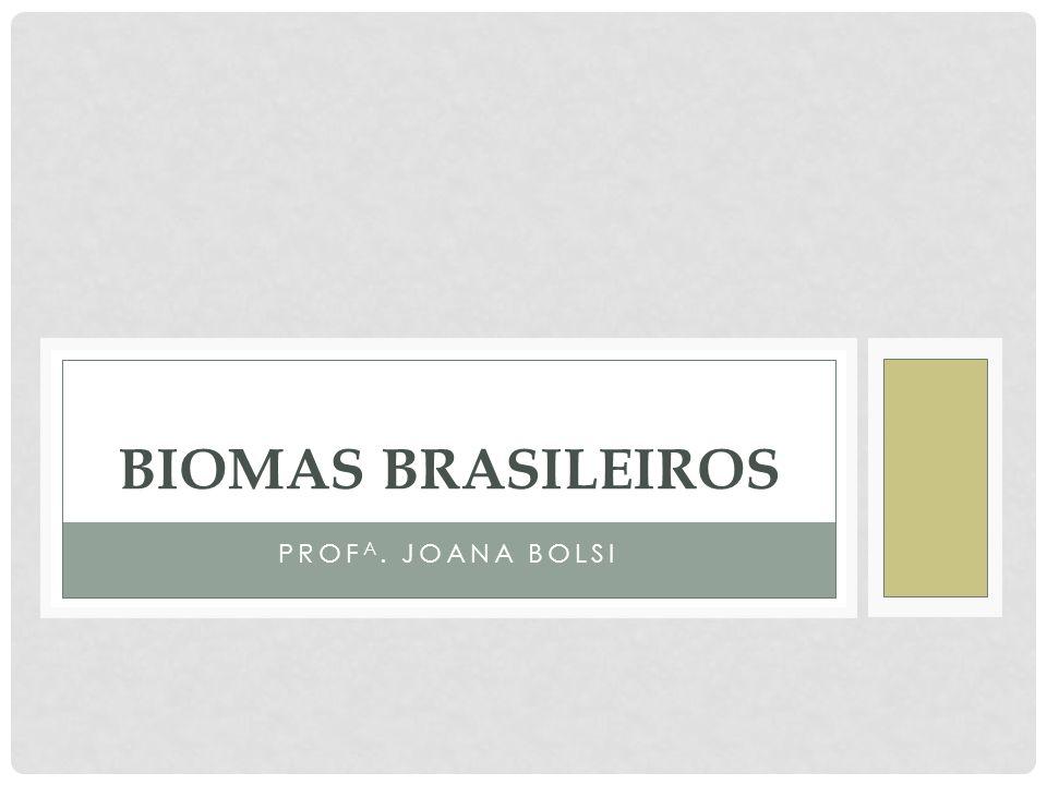 PROF A. JOANA BOLSI BIOMAS BRASILEIROS