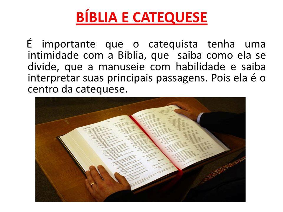 BÍBLIA E CATEQUESE É importante que o catequista tenha uma intimidade com a Bíblia, que saiba como ela se divide, que a manuseie com habilidade e saib