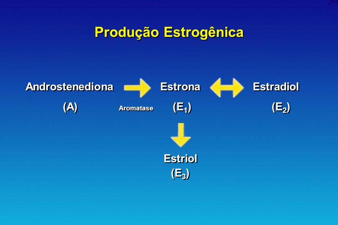 AndrostenedionaEstronaEstradiol (A) Aromatase (E 1 )(E 2 ) Estriol (E 3 ) Estriol (E 3 ) Produção Estrogênica