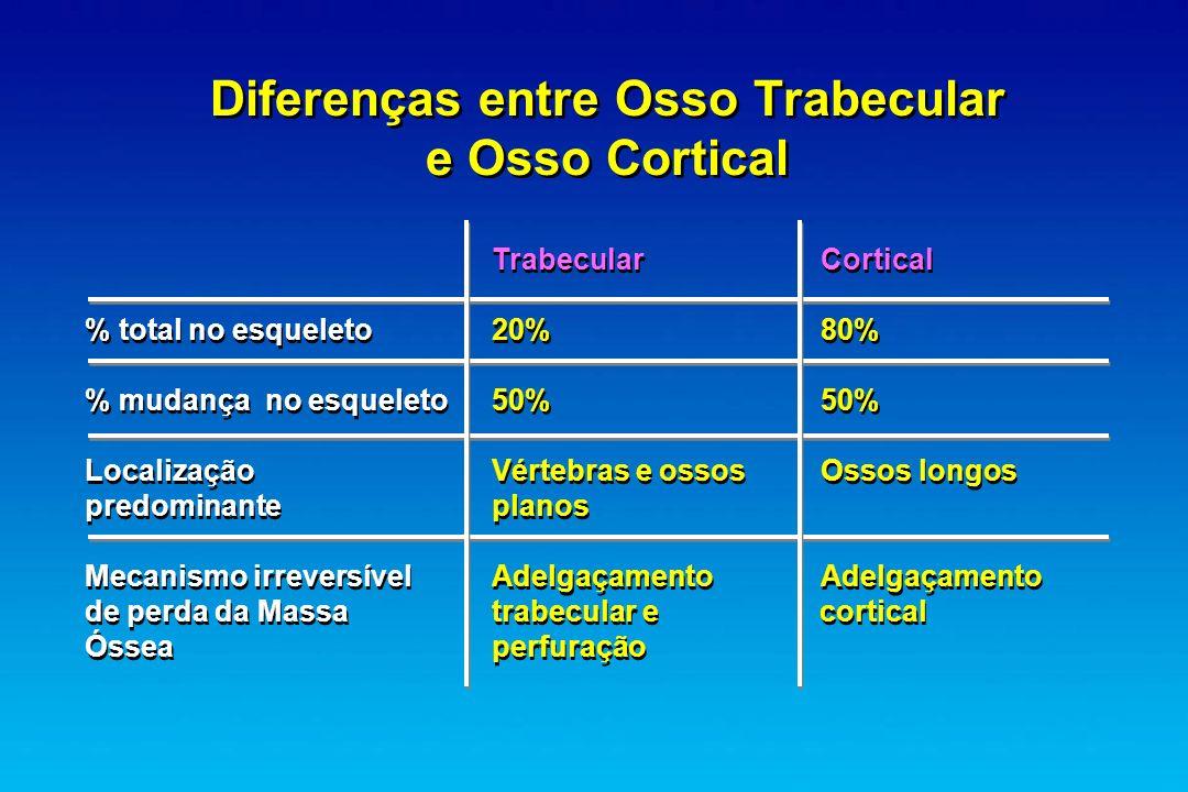 Diferenças entre Osso Trabecular e Osso Cortical TrabecularCortical % total no esqueleto20%80% % mudança no esqueleto 50%50% Localização Vértebras e o